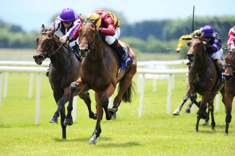 BRITISH PREVIEW: O'Brien colt can State his case