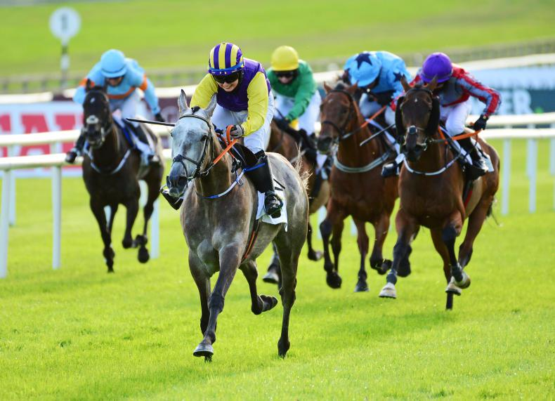FRENCH PREVIEW: Princess Zoe can get her Group 1 double