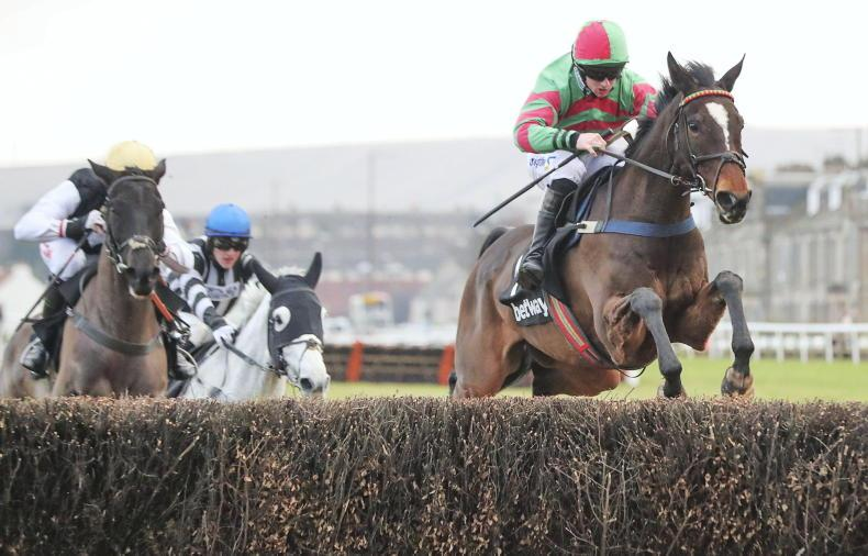 Nuts Well springs Old Roan surprise at Aintree