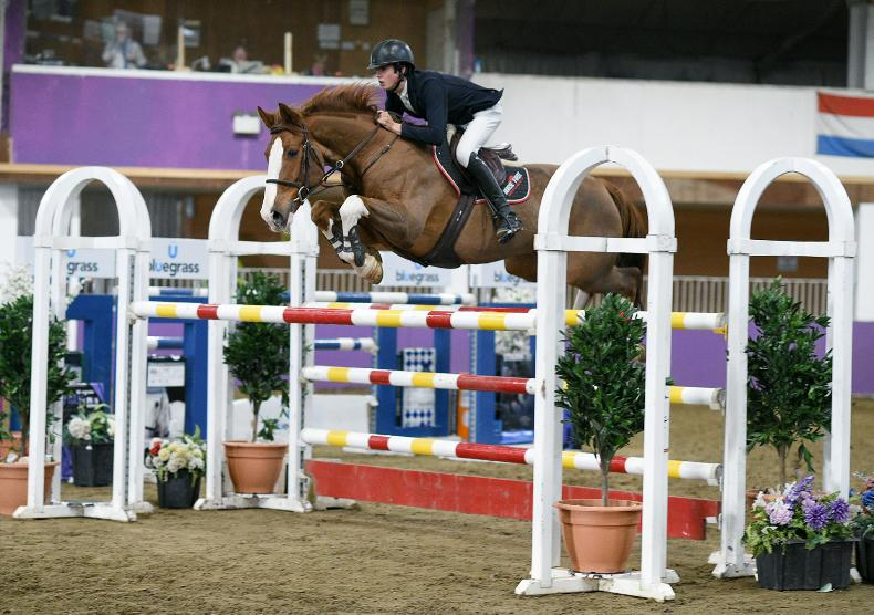 SHOW JUMPING: McEntee guides CSF Vinze to victory