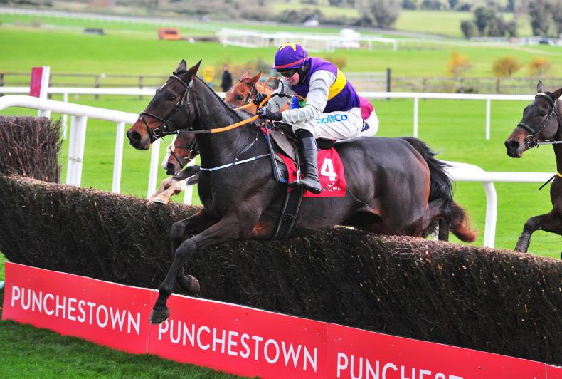 Exhibition puts on winning show at Punchestown