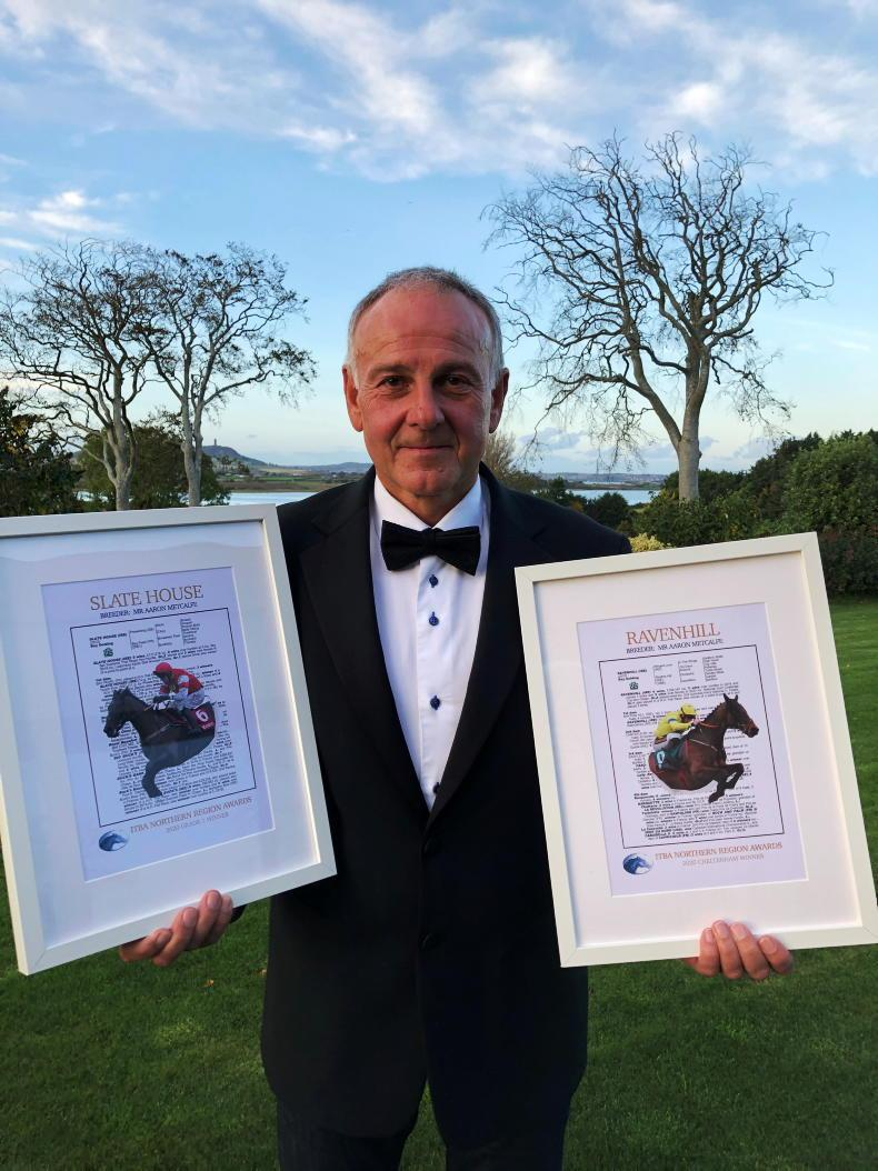 ITBA NORTHERN REGION AWARDS: Northern breeders produce quality winners