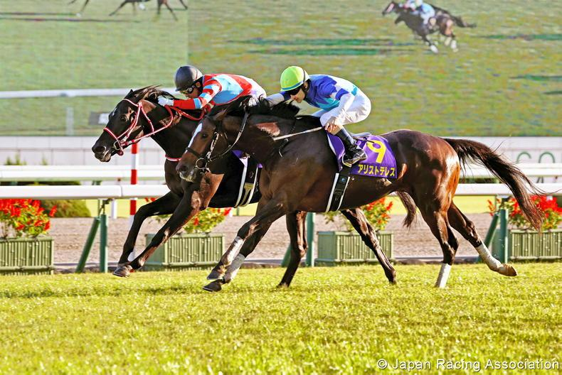 JAPAN: Contrail has to fight for Triple Crown