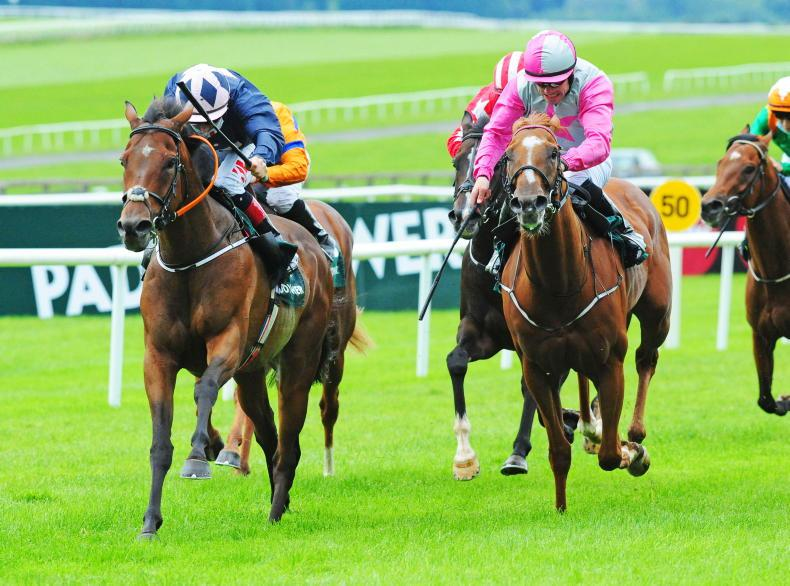 NAAS SUNDAY PREVIEW: Improving Haggas filly can progress to take Athasi Stakes