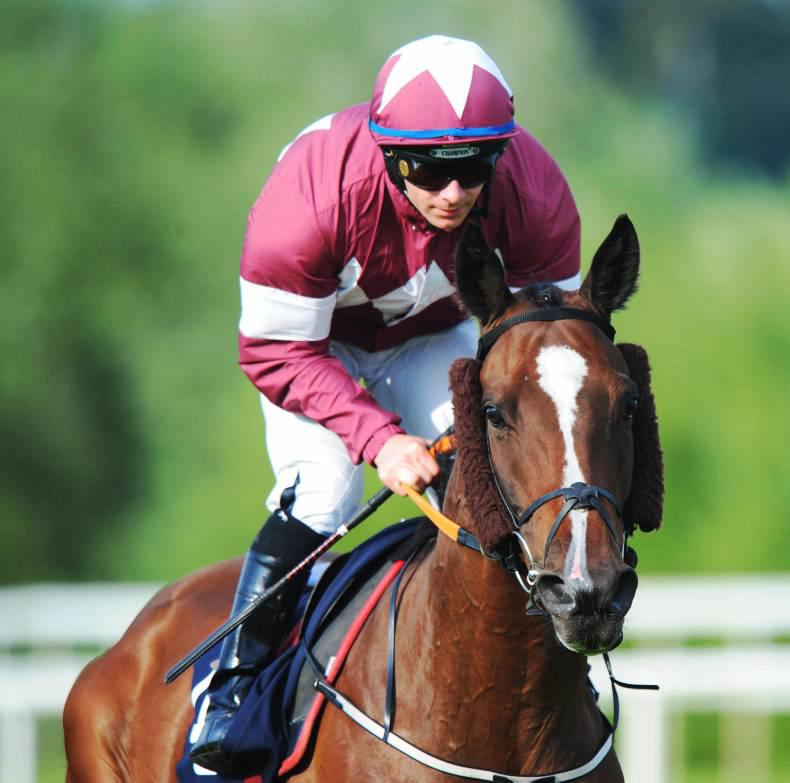 FRANCE: Auteuil agenda for Bayan and Gitane