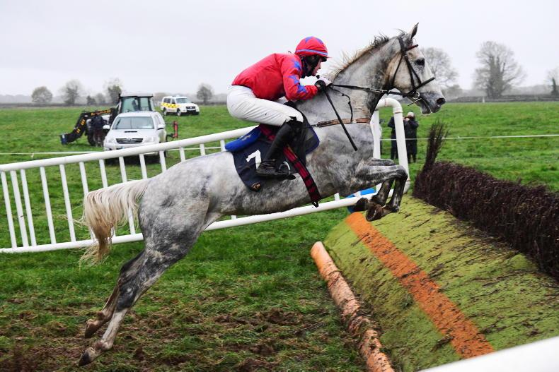 DAMMA HOUSE SUNDAY: Quill Road wins as he likes