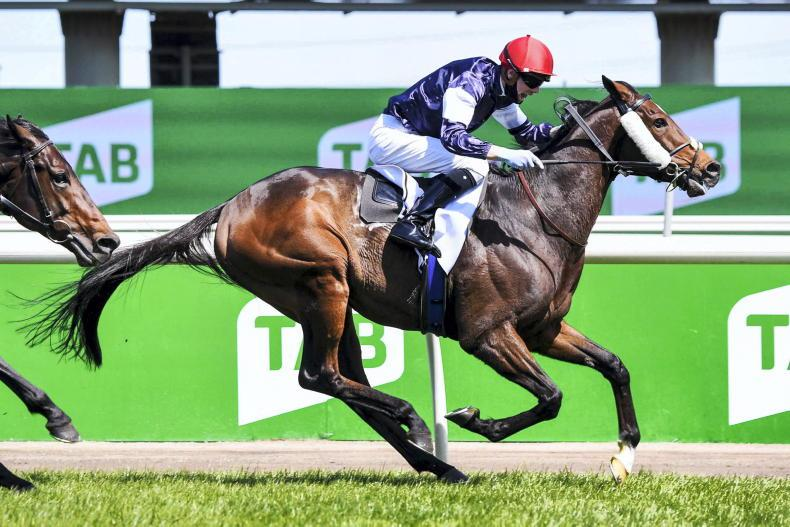 SIMON ROWLANDS: Twilight Payment's finishing speed near perfect
