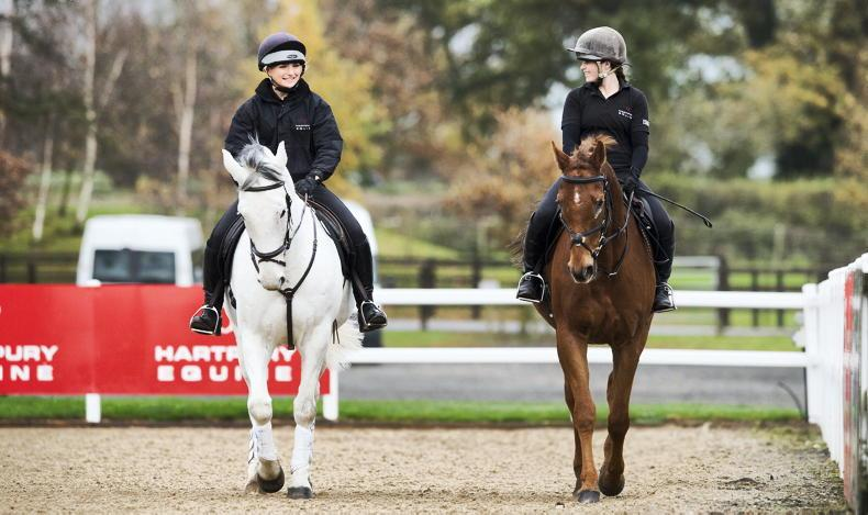 HORSE SENSE: New equine study provides warm-up answers