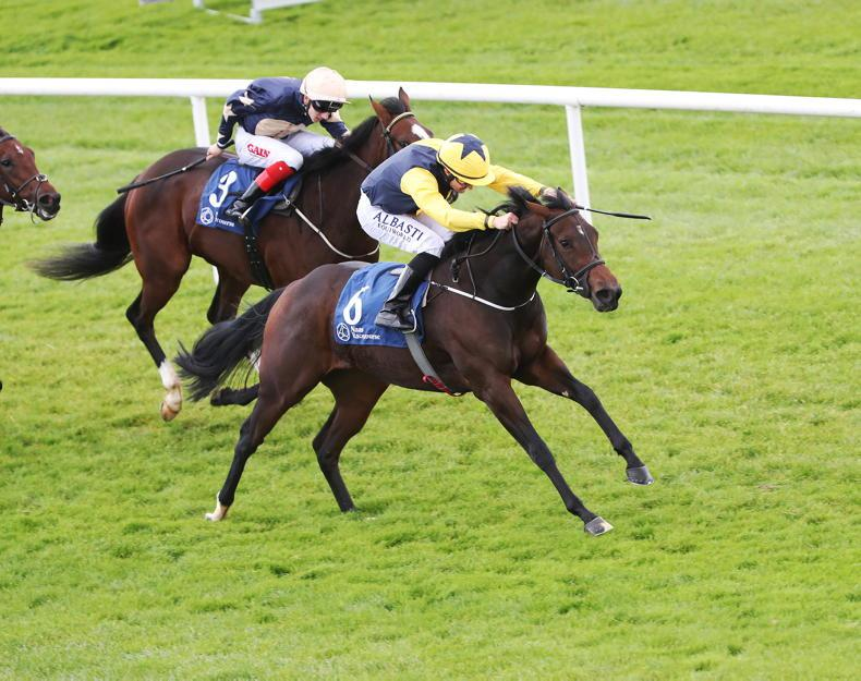 AIR COLUMN: On Course: Naas: Tally-Ho as Naas closes turf season