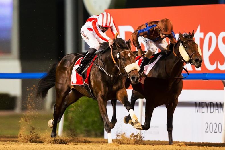 Night of doubles at Meydan's season kicks off