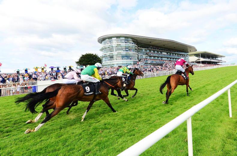 NEWS: Equine issues feature in €600m Galway road project