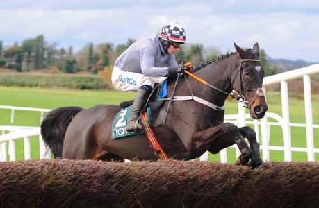 Castlegrace Paddy inflicts Fortria defeat on favourite A Plus Tard