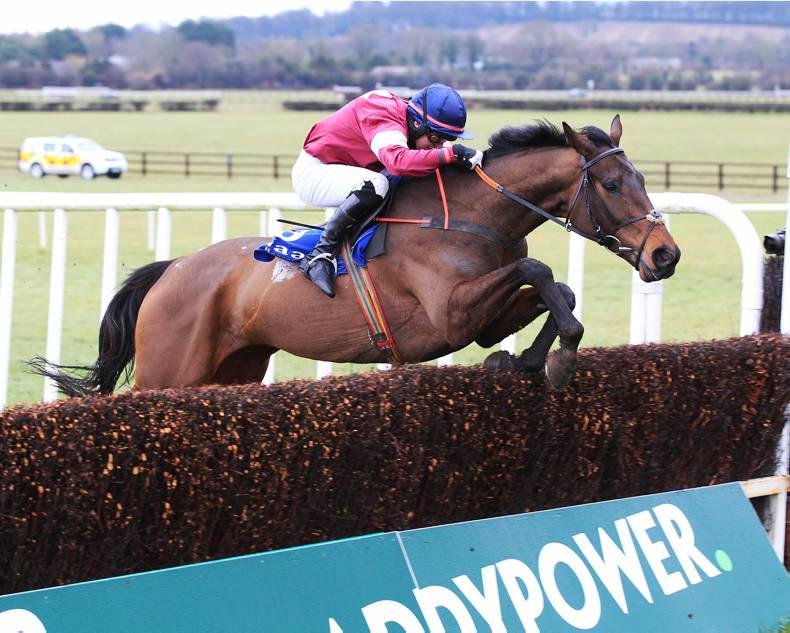 PEDIGREE ANALYSIS:Graded success for €325,000 Derby Sale graduate Empire Of Dirt