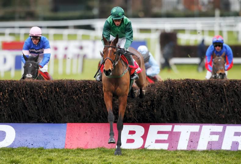 Brief pedigree notes from the weekend's international graded action