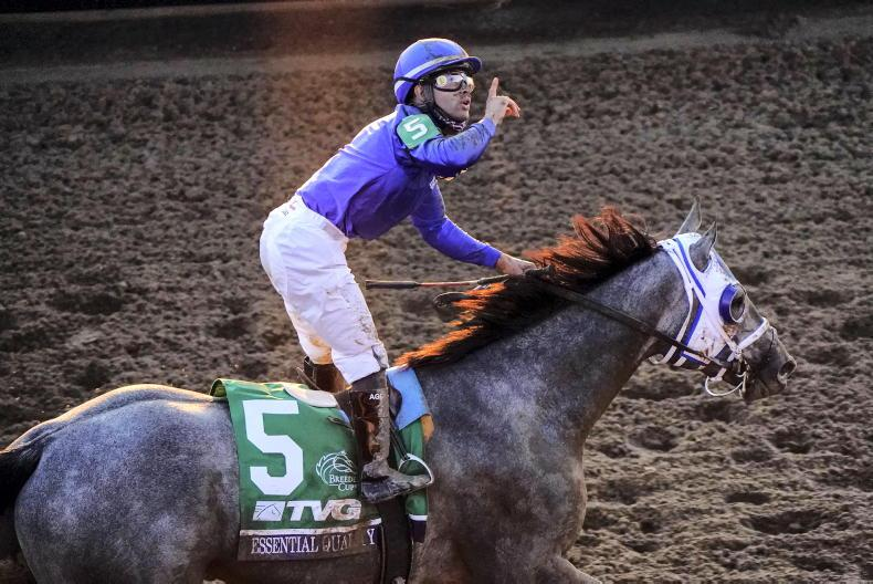 BREEDERS' CUP: Quality performance by top Juvenile