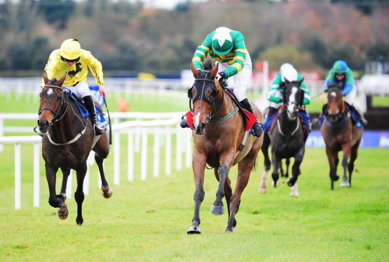 EOGHÁIN WARD: Fairyhouse template allows showcasing of point community