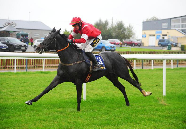 WEATHERBYS ITBA NH FILLIES BONUS:  Party alive in kicking in County Cork