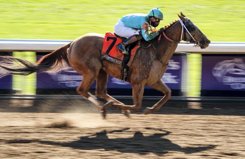 BREEDERS' CUP: Whitmore gets his big day