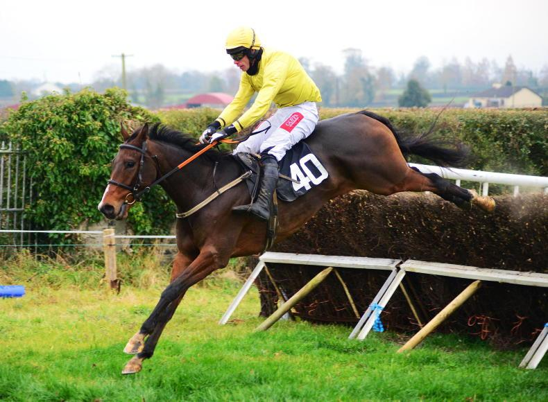 POINT-TO-POINT RATINGS: Jonbon awarded highest ever four-year-old figure