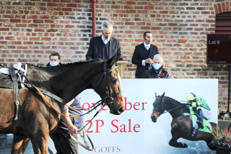 GOFFS UK NOVEMBER P2P SALE: Hype not misplaced as Jonbon sets world record