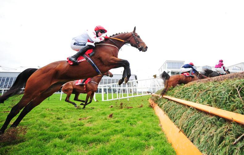 PUNCHESTOWN SATURDAY PREVIEW: Count on Darver for another Star performance
