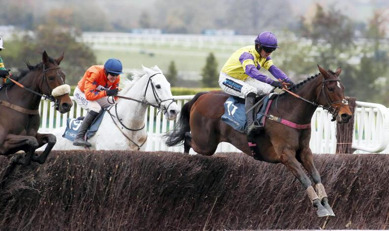 RORY DELARGY: My four best bets for Cheltenham this weekend
