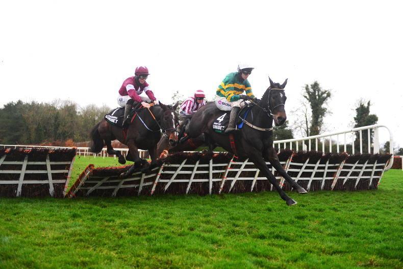 SIMON ROWLANDS: Saint Roi could have credible Champion Hurdle claims