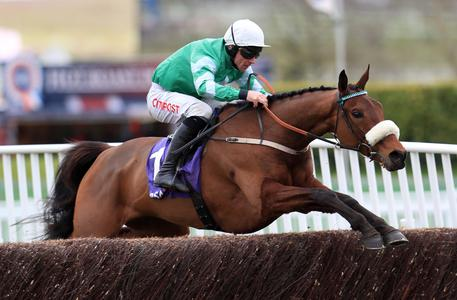 Presenting Percy primed for Kemboy and Monalee clash