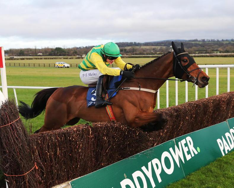 NAAS SATURDAY PREVIEW: Get your Cash Back on Mullins's smart chaser