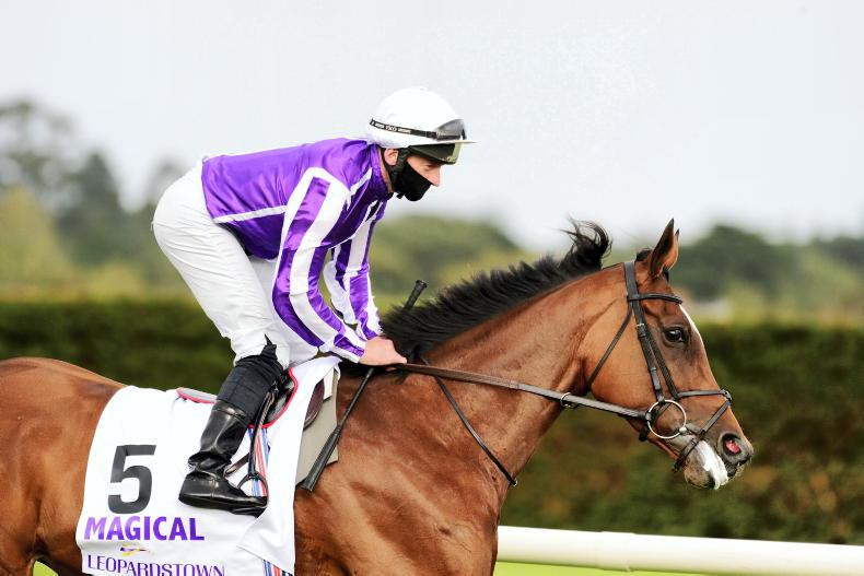 Magical on course for Hong Kong Cup