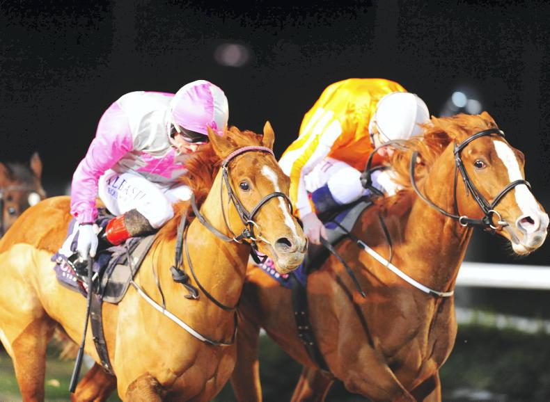 VIEW FROM ABOVE: Dead heat for Breen and Solar System