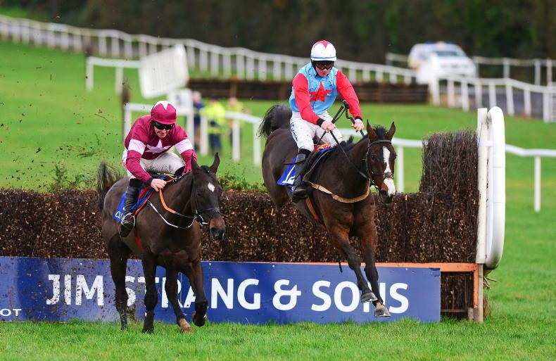 HORSES TO FOLLOW: Horses to note this week