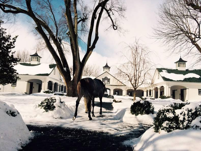 DARLEY FLYING START: Braving the chills for the special moments