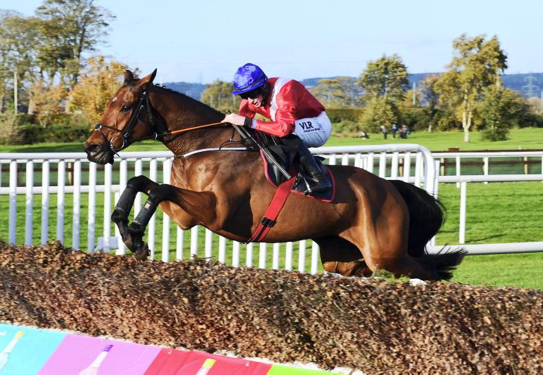 DRINMORE NOVICE CHASE PREVIEW: Faultless Allen can maintain perfect run
