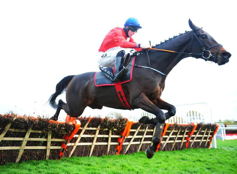 ROYAL BOND NOVICE HURDLE PREVIEW: Bank on Ballyadam
