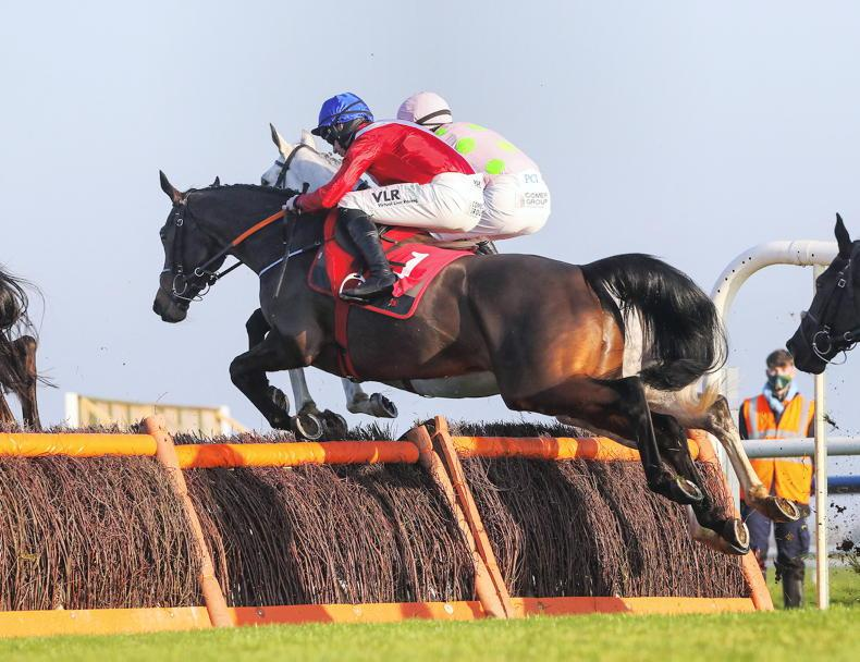 FAIRYHOUSE SUNDAY: Ballyadam's learning fast
