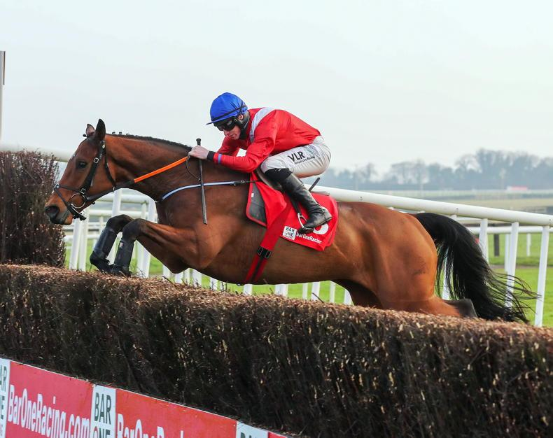 EOGHÁIN WARD: Fairyhouse showcases outstanding quality of pointers