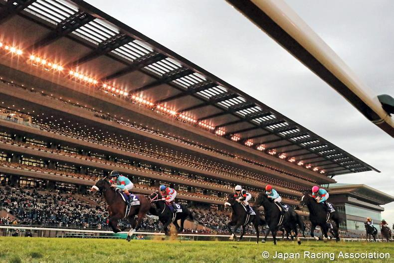 JAPAN: Almond Eye bows out in perfect style