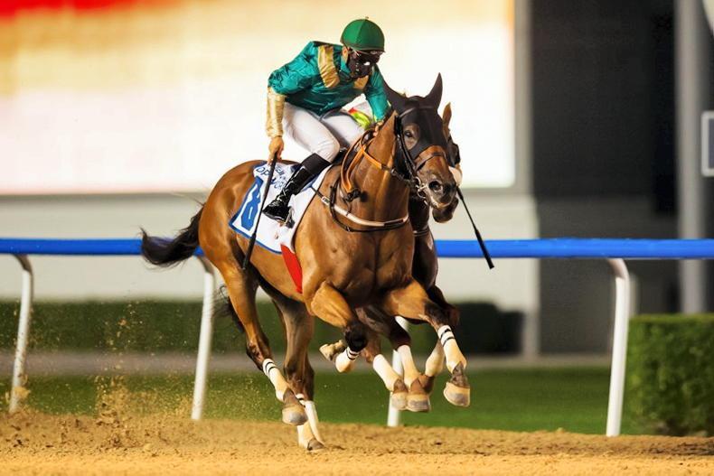 UAE: Listed double for bin Ghadayer at Meydan