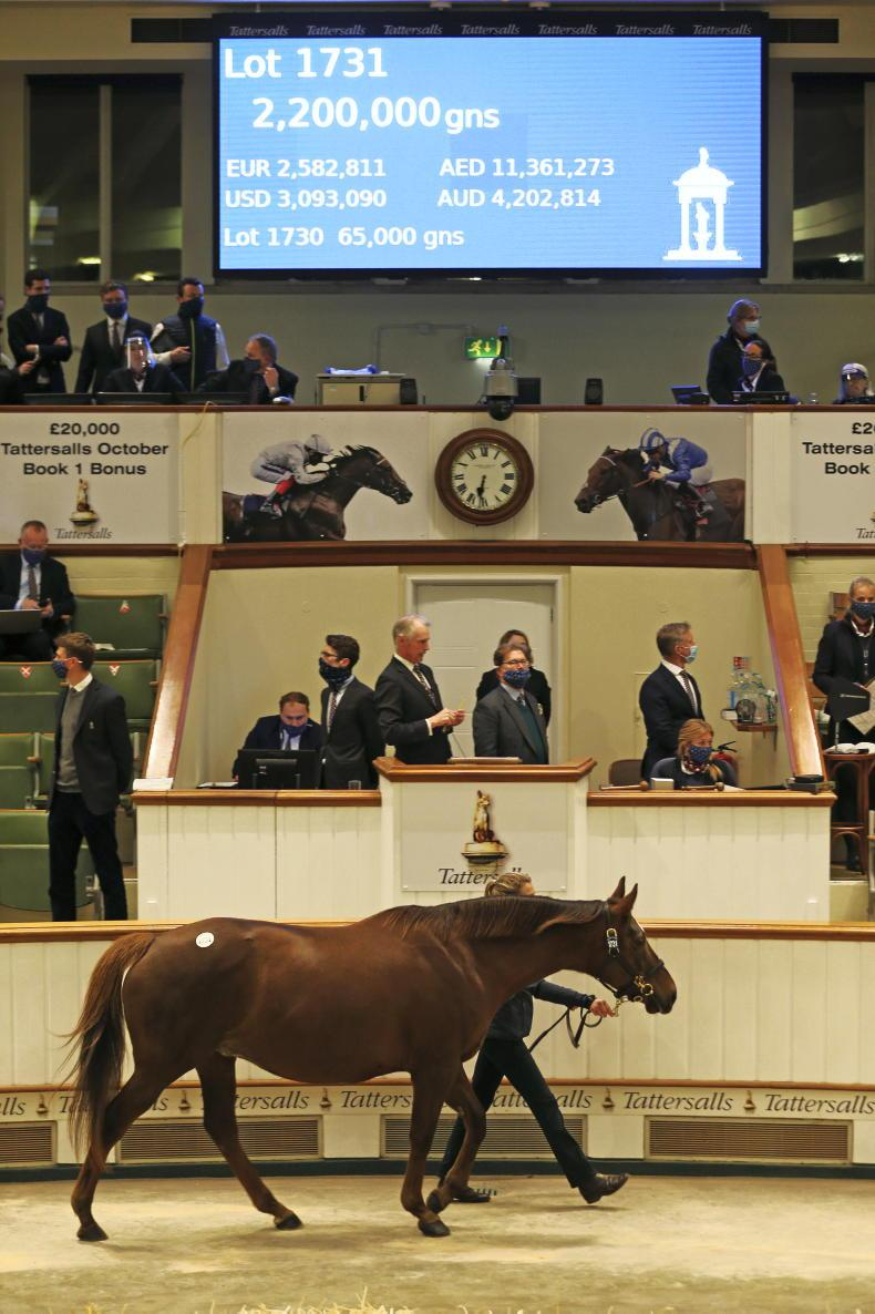 TATTERSALLS DECEMBER MARE SALE: Absent stars contribute to sale's decline