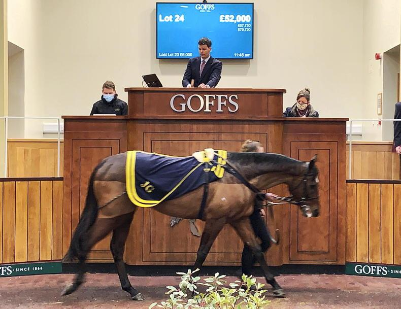 GOFFS UK DECEMBER HIT SALE: Indianapolis leading the way in Doncaster