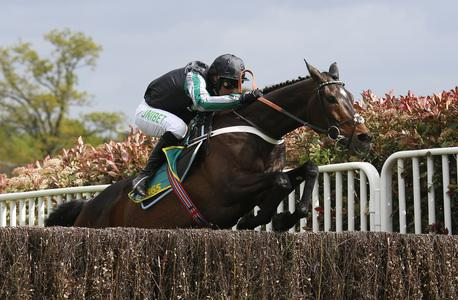 Ground conditions mean Altior to miss Tingle Creek reappearance