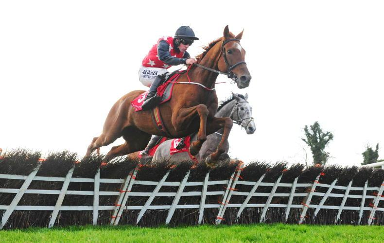 Cape Gentleman makes his mark on hurdling bow