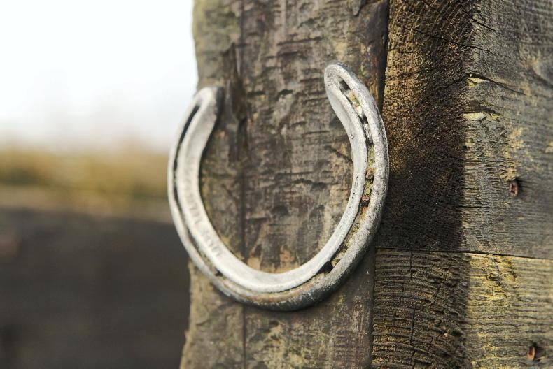IRISH HORSE WORLD FIXTURES: DECEMBER 12th 2020