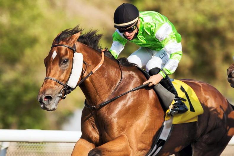 UAE: O'Shea among those with doubles at Jebel Ali
