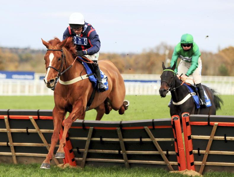 RORY DELARGY: Who wants a 33/1 winner of the Champion Hurdle?