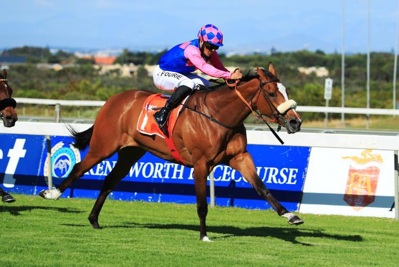 SOUTH AFRICA: Captain's Ransom takes Cape Guineas