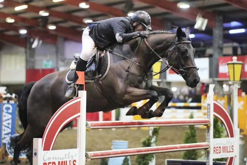 INTERNATIONAL: Two-star wins for Hadley and Dalm