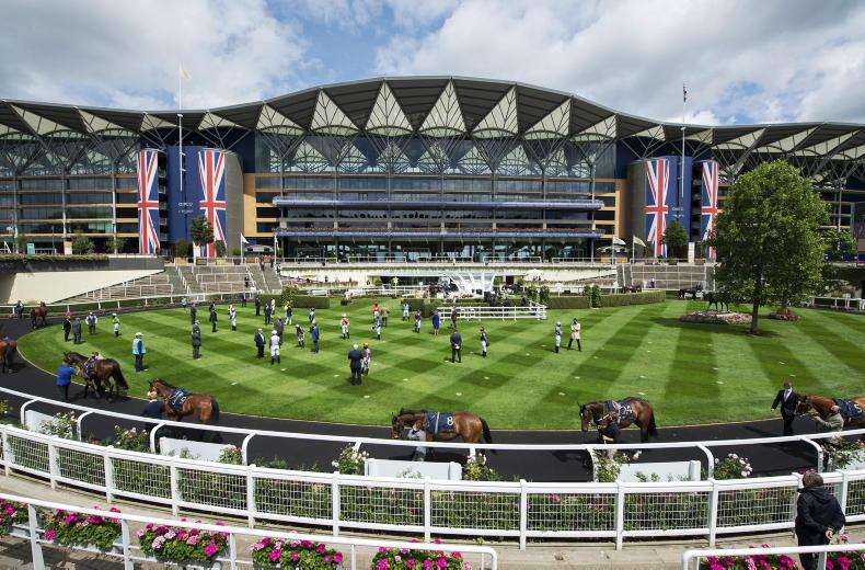 Ascot expects limited crowds through 2021