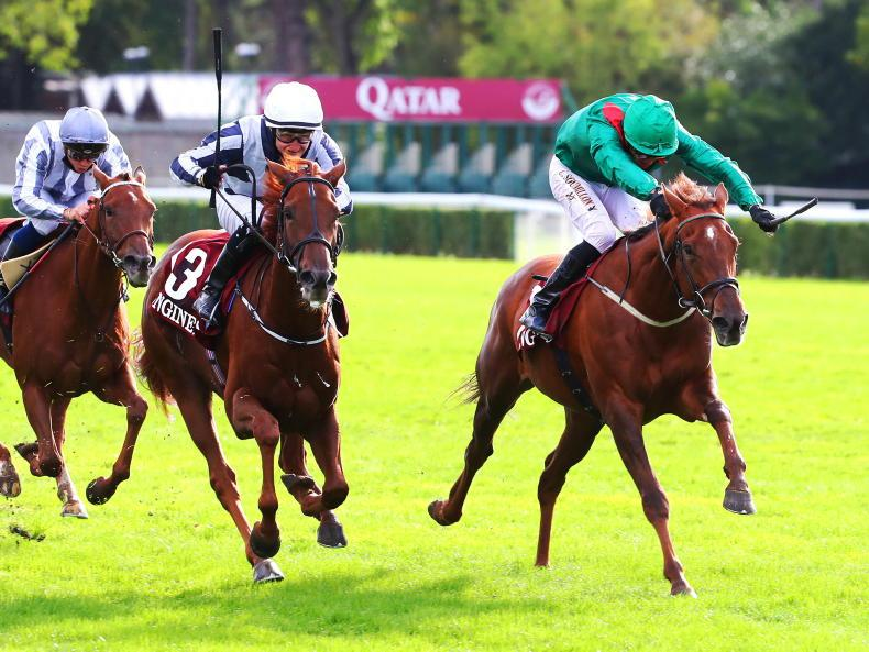 REVIEW 2020: France: Irish fillies make big impact